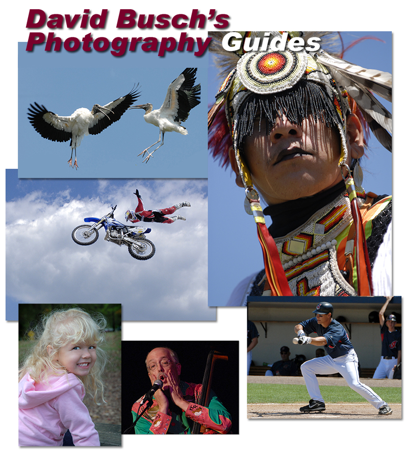 David Busch's Photography Guides